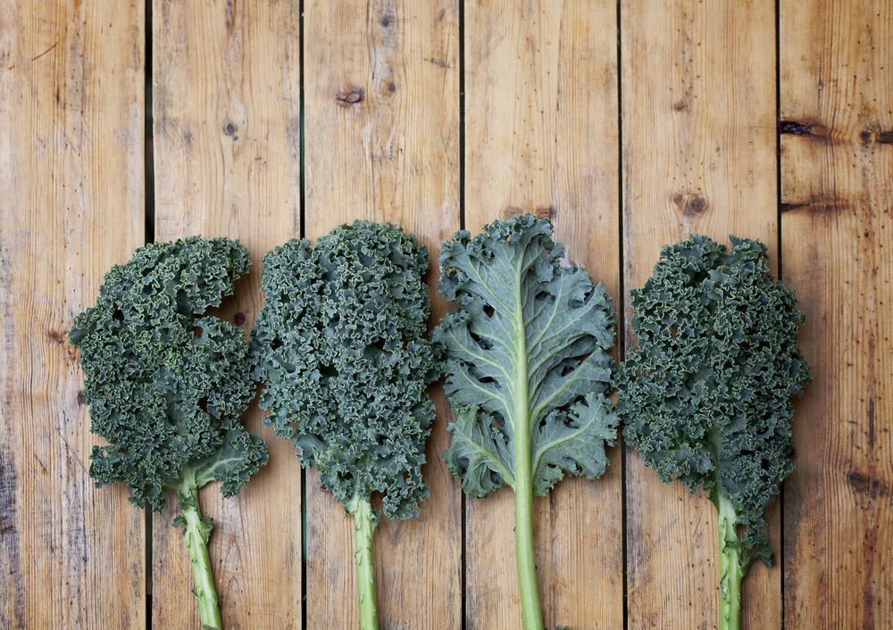 The many benefits of kale for your natural beauty