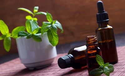 Mint essential oil in small bottles, aromatherapy setting on wooden background.Selective focus