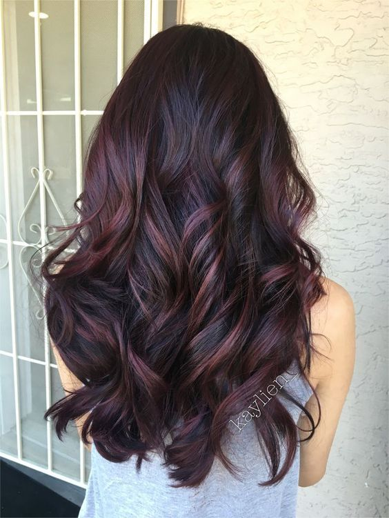 Plum burgundy highlights